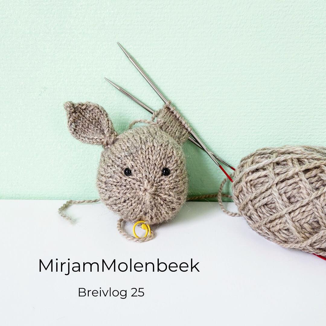 MirjamMolenbeekBreivlog25